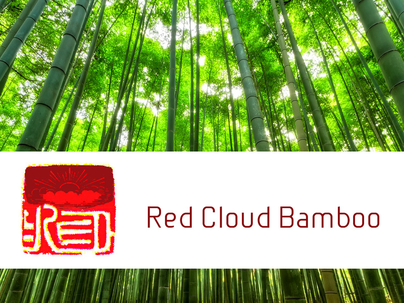 Logo and Branding Design for Red Cloud Bamboo
